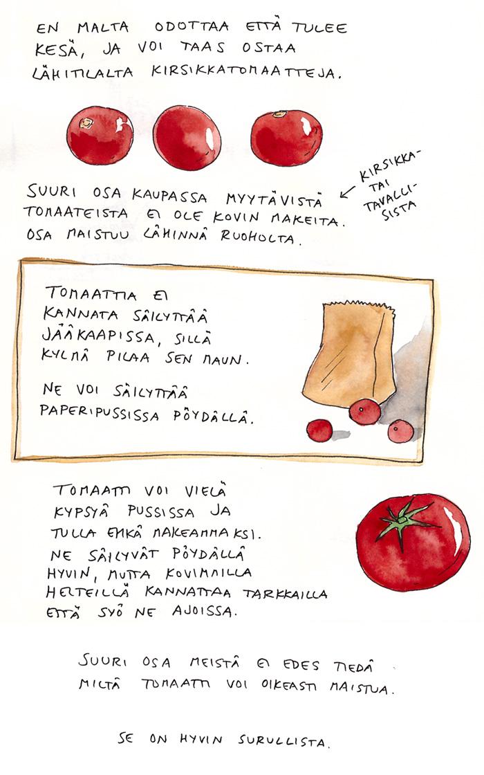 tomaatti, tomaatit, kirsikkatomaatti